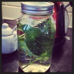 Minted simple syrup.  Boozemongering at it's finest, my friends.  You will use this freakalicious syrup in everything!