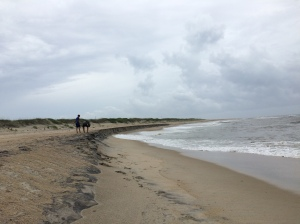 This far south on the Outer Banks meant that many evenings we had the beach entirely to ourselves.